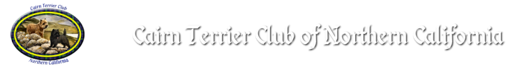 Cairn Terrier Club of Northern California